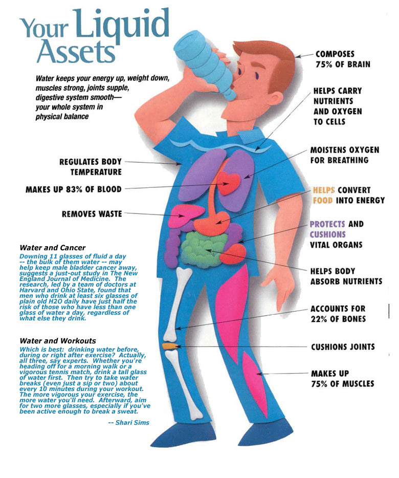 Importance And Tips: The Importance Of Being Hydrated : Part 2